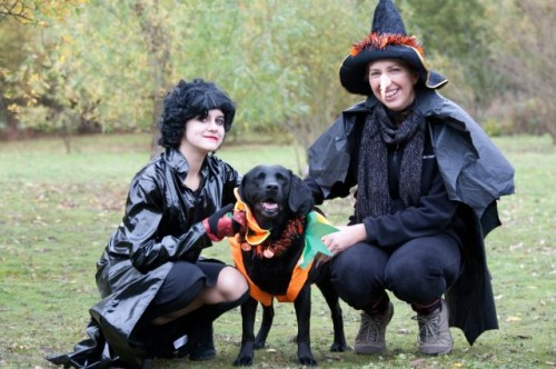 013 NH Halloween Dog Walk 1775 500x332 Dog Owners Invited On Halloween Charity Walk
