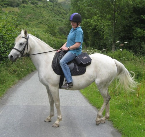 jennie 1 Large 500x472 Horse Trek From Llanamon to Anglesey‏ For Local Hospice
