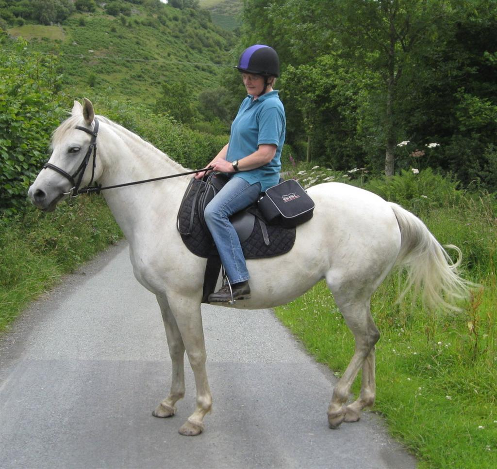 Jennie Crawshaw and her horse Daisy are set to return from their 150 mile trek from Llanarmon D.C to Anglesey in aid of Nightingale House Hospice today.