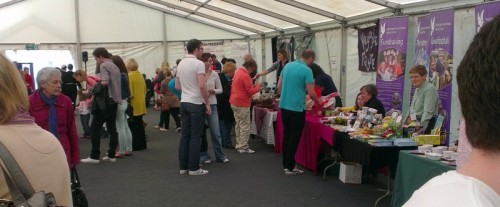 wrexham food festival view 500x207 Wrexham Food Festival 2012