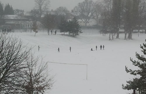 bellevue park playing Friday: Wrexham Snow   Live Updates And Information