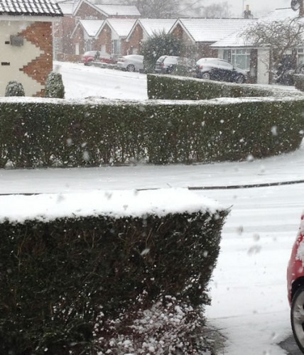 estate snow 428x500 Friday: Wrexham Snow   Live Updates And Information