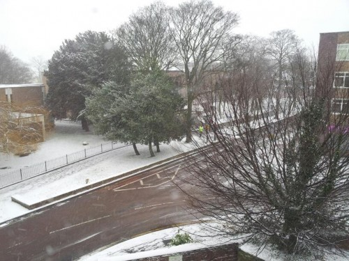 mark rodgers library 500x375 Friday: Wrexham Snow   Live Updates And Information