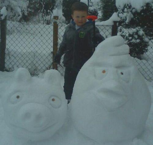 angry snow birds
