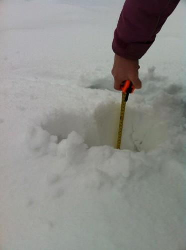 tanyfron snow