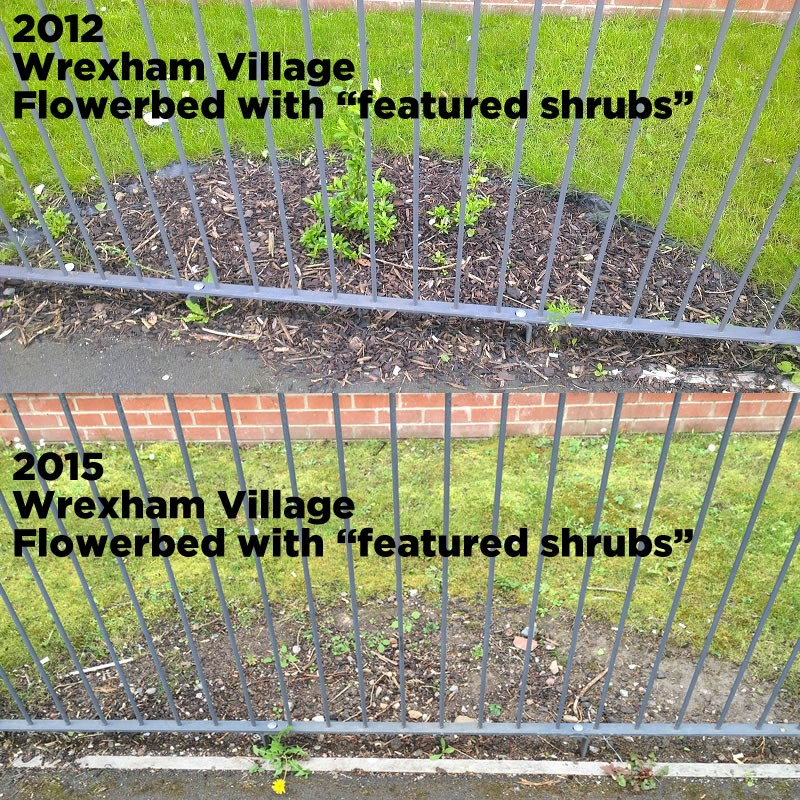 wrexham-village-spot-the-difference