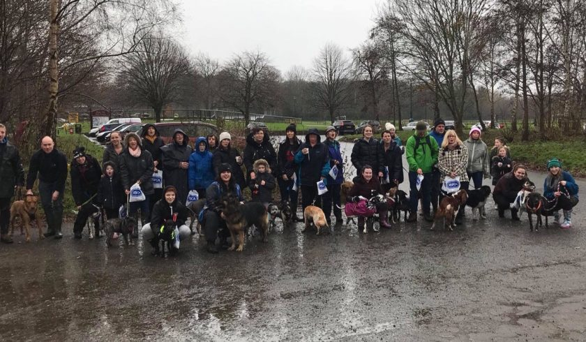 Wepre Park set for free 'Big Walkies' dog walk on Sunday hosted by Wrexham & Deeside RSPCA